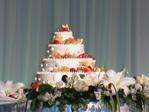 20050115_cake
